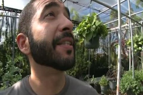 Bearded Hunk enjoys penis In A Greenhouse HD