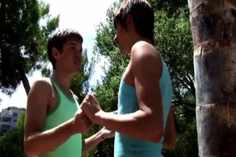 these Two gays enjoy A Hard Sodomy Session