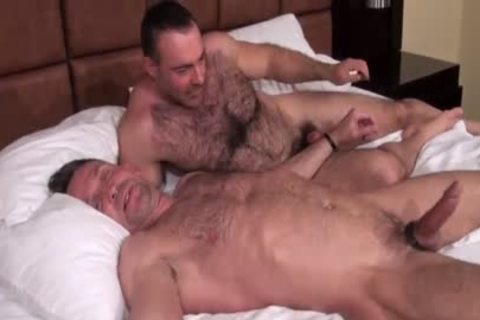 daddy Bears fuck