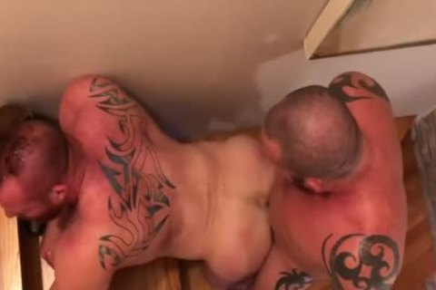 Bears boning raw On The Stairs